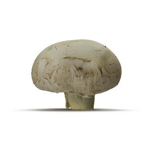 closed mushroom 3d 3ds