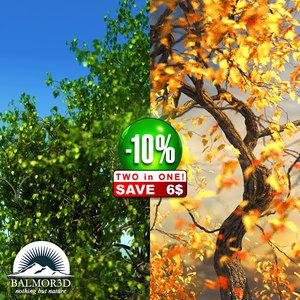 broadleaf leaf tree 3d max