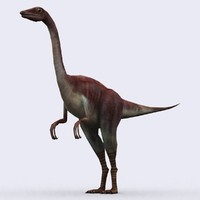 - compsognathus 3d model