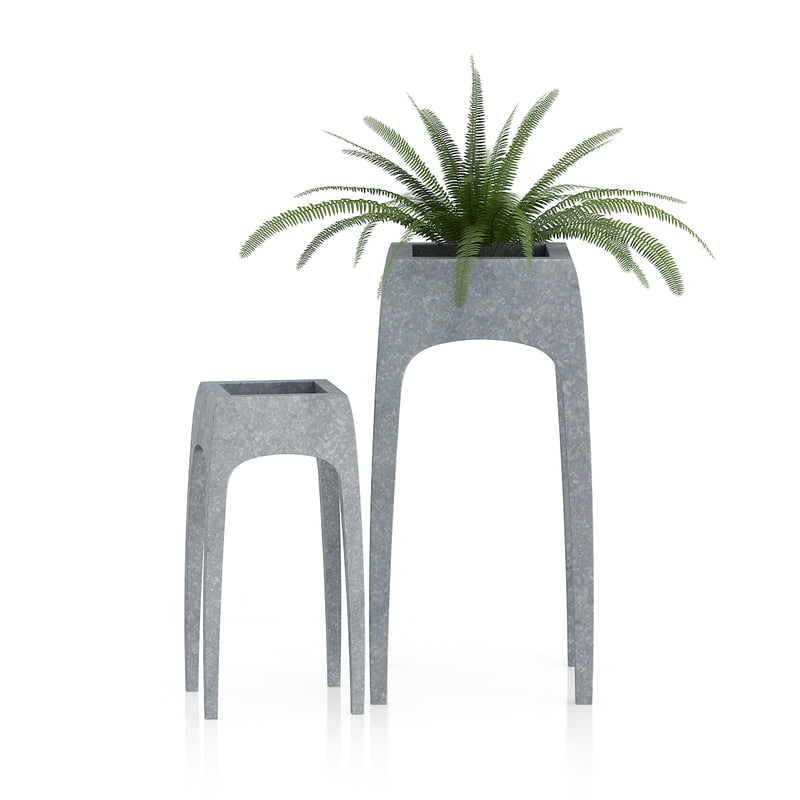 3d fern plant old metal