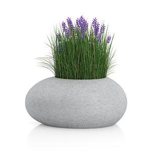 grass flowers concrete 3d c4d