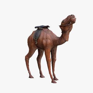 camel scan 3d c4d