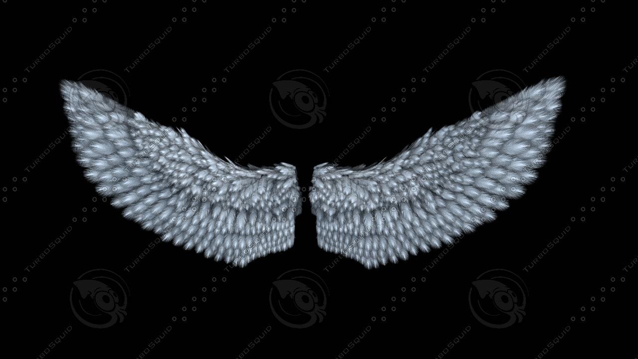 3dsmax wing