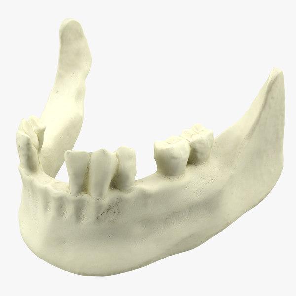 c4d teeth mold