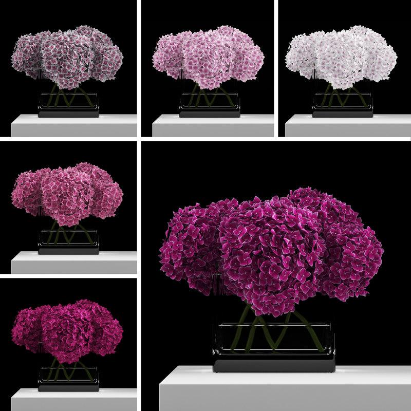 max bouquet hydrangeas