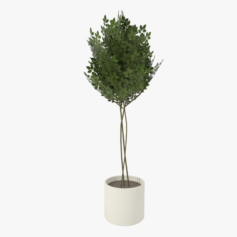 modern pot planted 3ds