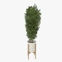 3d modern pot planted