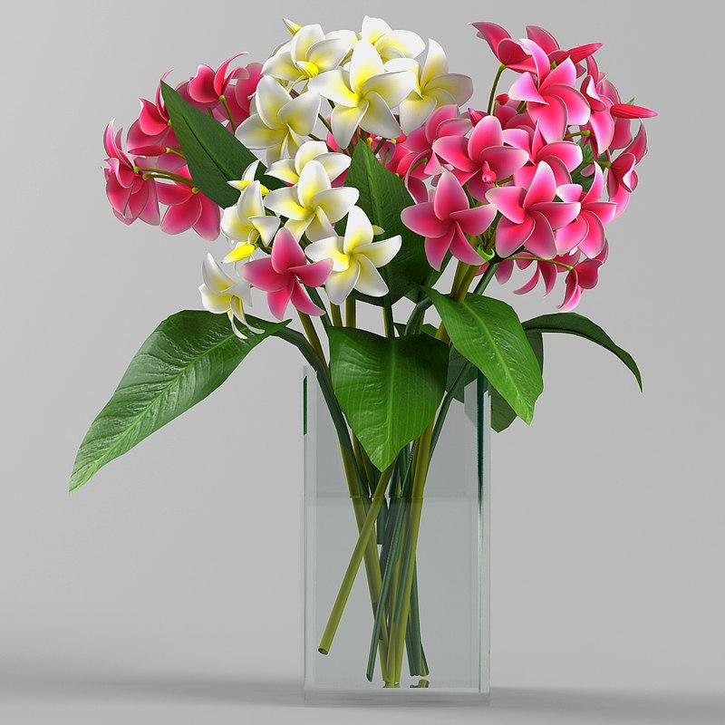 3d plumeria flower bouquet