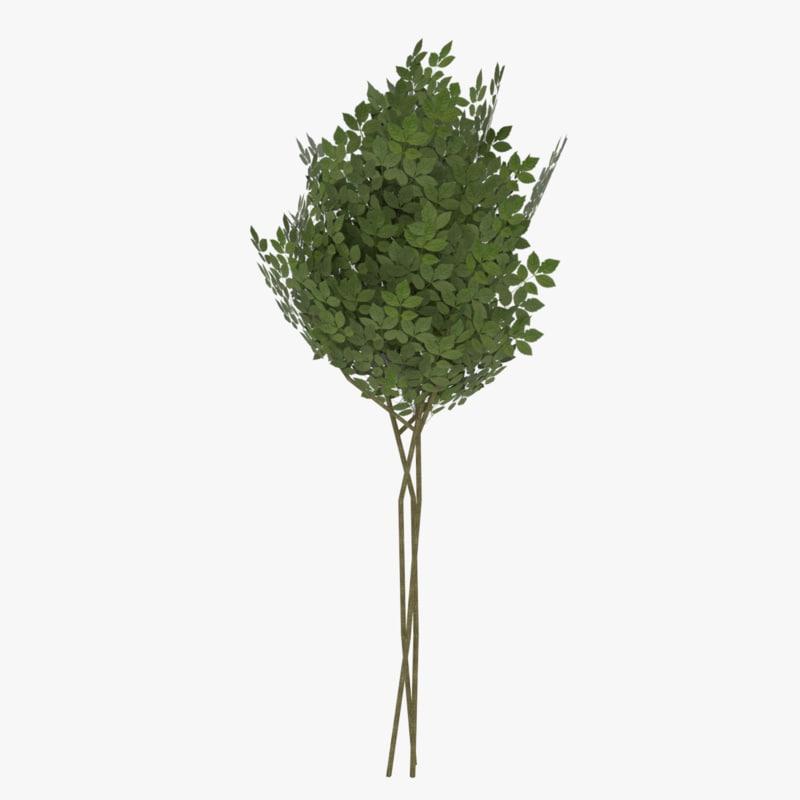 3ds shrub ready