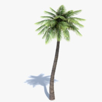 Low Poly Palm Tree 2