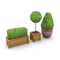 3d model plants potted