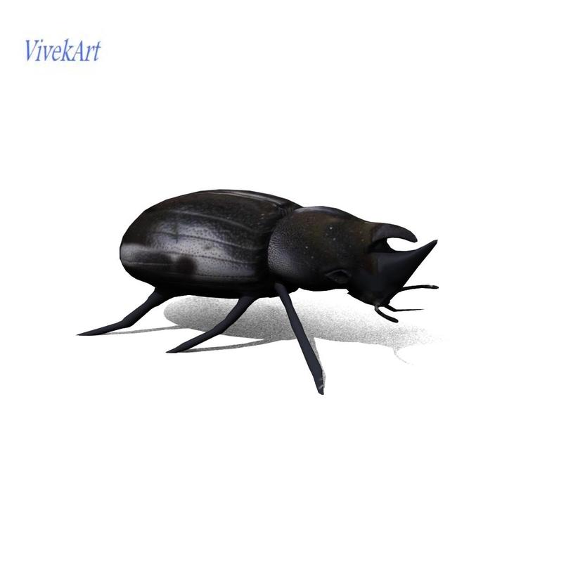 scarab beetle 3d obj