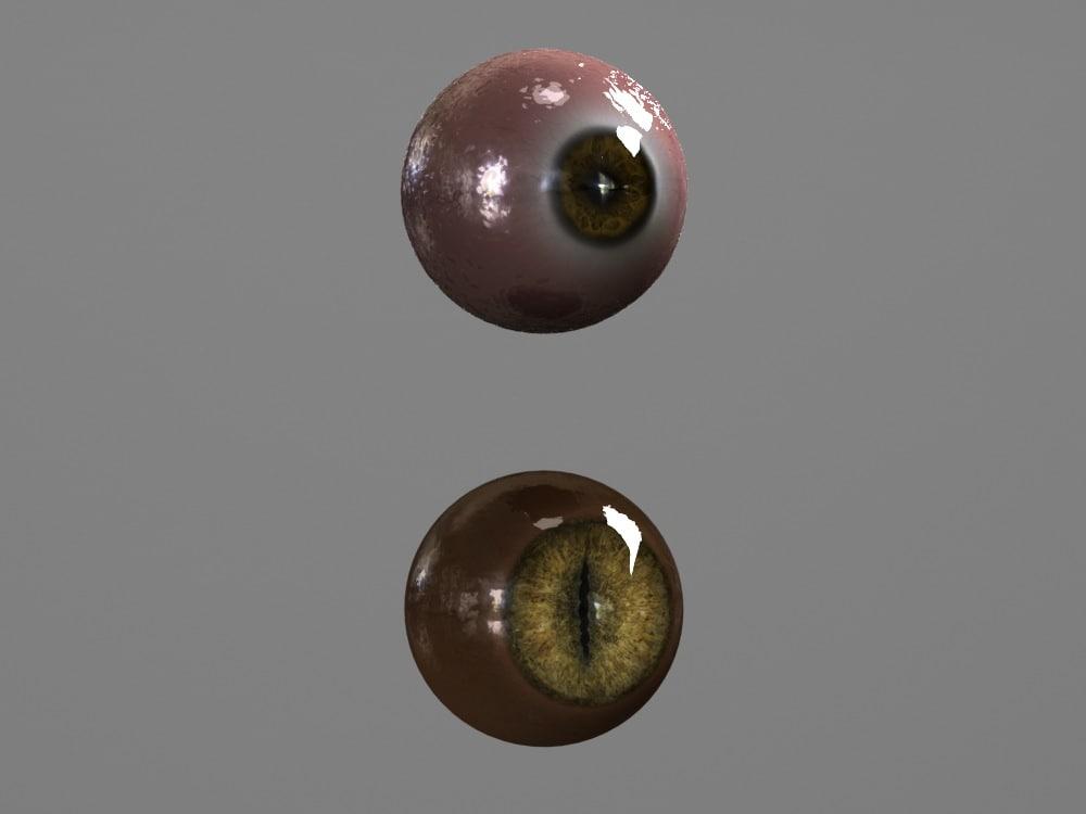 3d human eyes - model