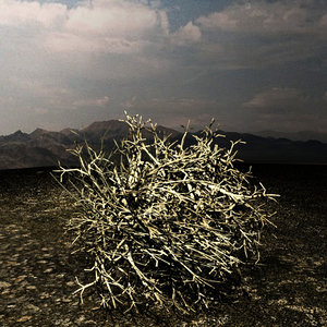 3d model western tumble weed scanline