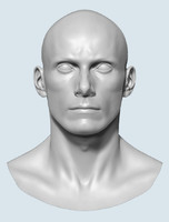 base head male