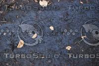 Ground_Texture_0020