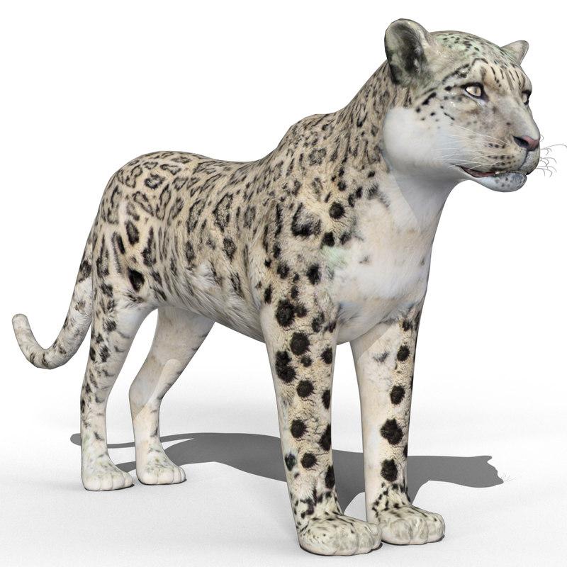 3d model snow leopard bars