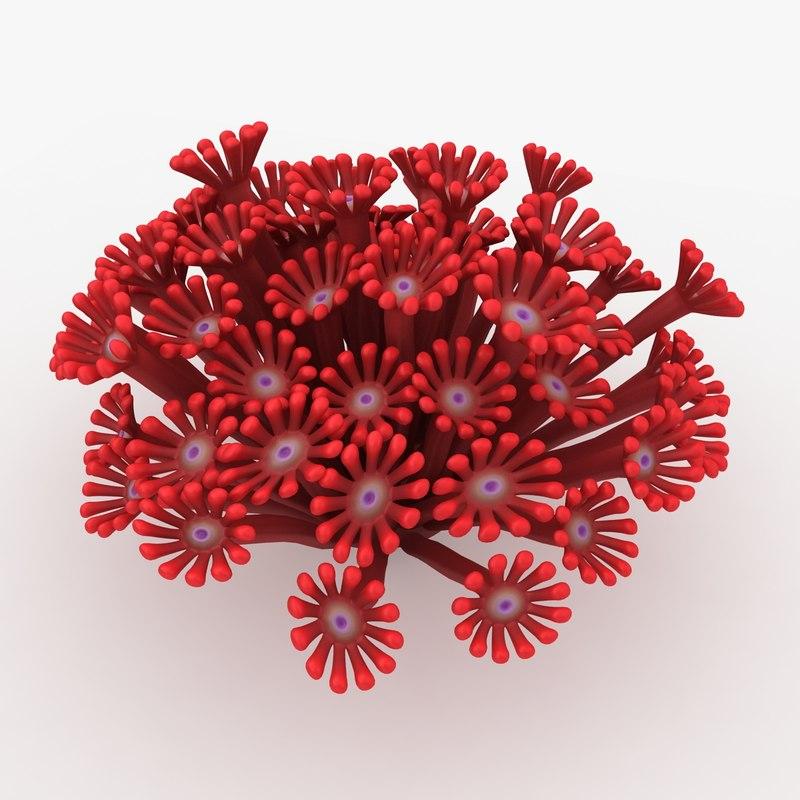 poritidae coral red 3d max