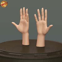 3d model modeled body female hand anatomy