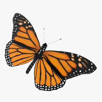 3d model monarch butterfly 03
