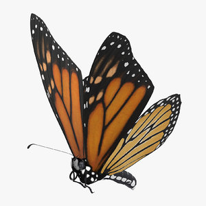 3d monarch butterfly flying