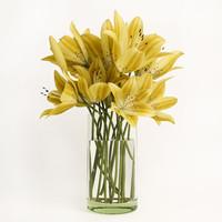 3d model bouquet yellow lilies