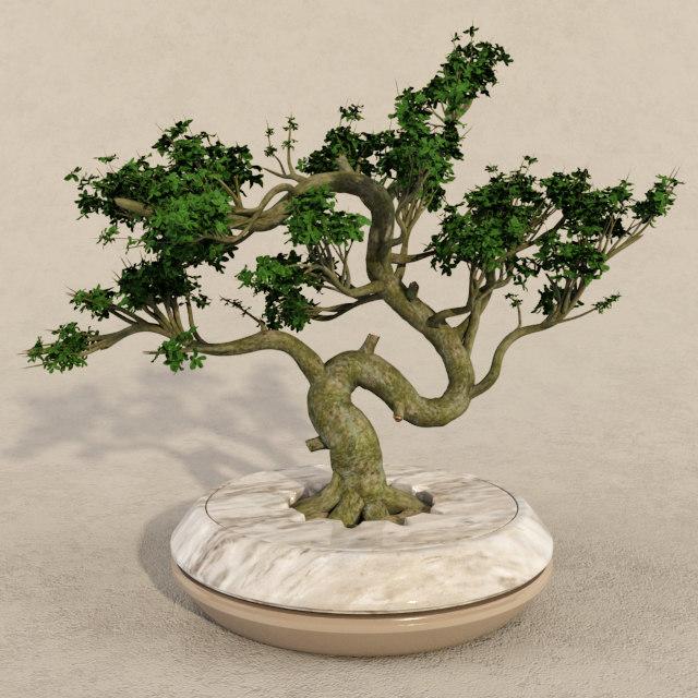 bonsai realistic 3d model
