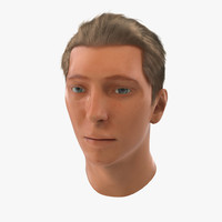 3d male head hair 2