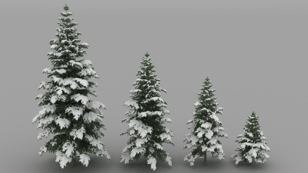 snowy fir trees 3d model