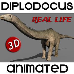 maya diplodocus dinosaur - real