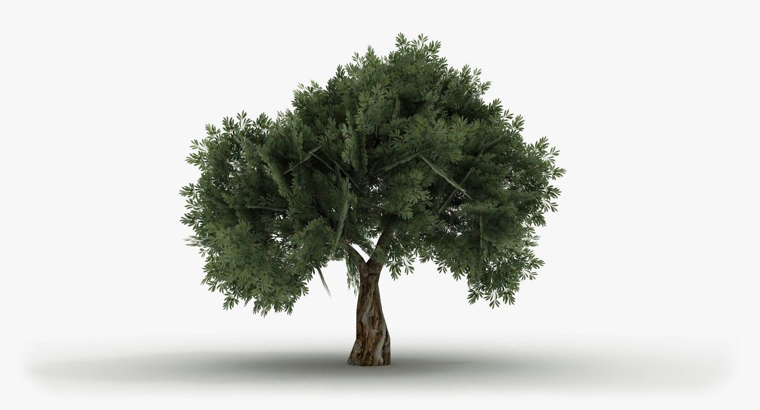 realistic apple tree max