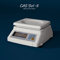 3ds max cas sw5 scale sale