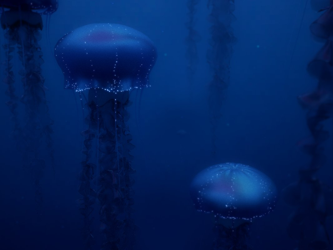 3d jellyfish fish model