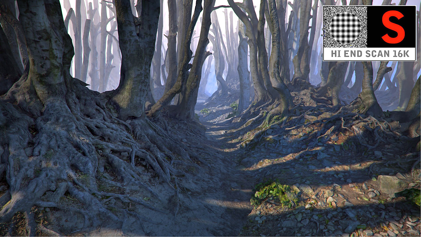 3d model real forest ultra hd