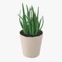 Aloe 3D models