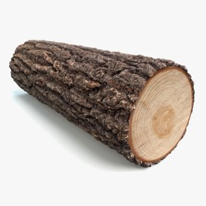 log wood firewood 3d x