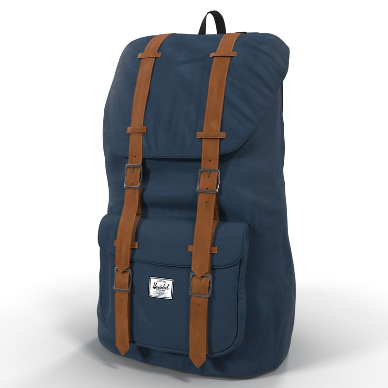 max backpack 8 blue