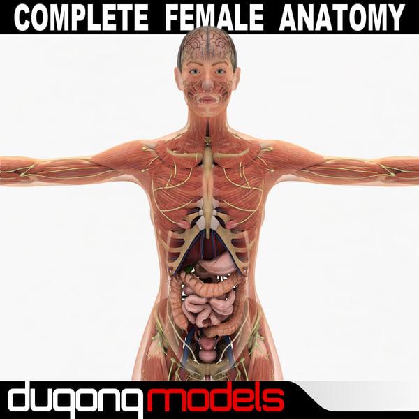 3d dugm01 female anatomy pack