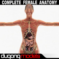 Female Anatomy Pack Complete (Textured)