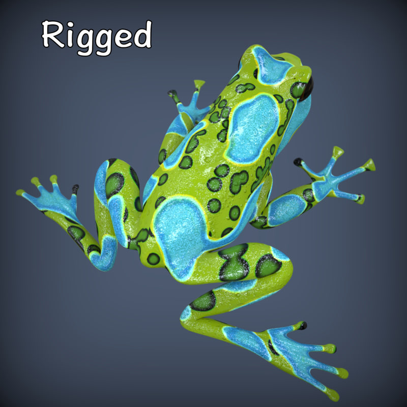 realistic poison dart frog ma