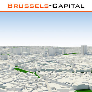 brussels-capital region cityscape 3d obj