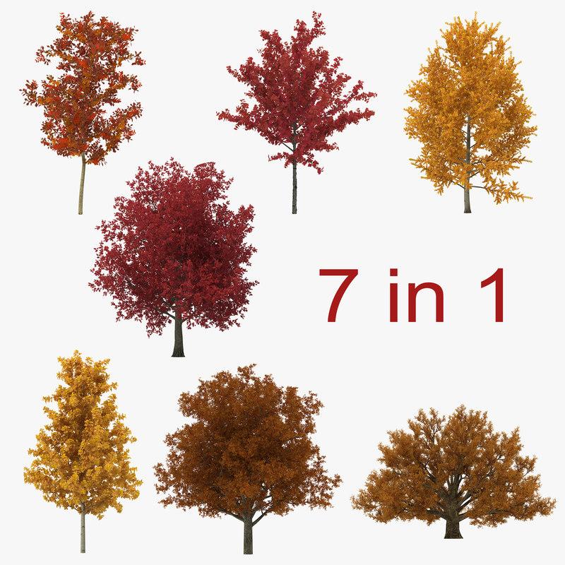 c4d autumn trees
