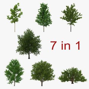 summer trees 3d max