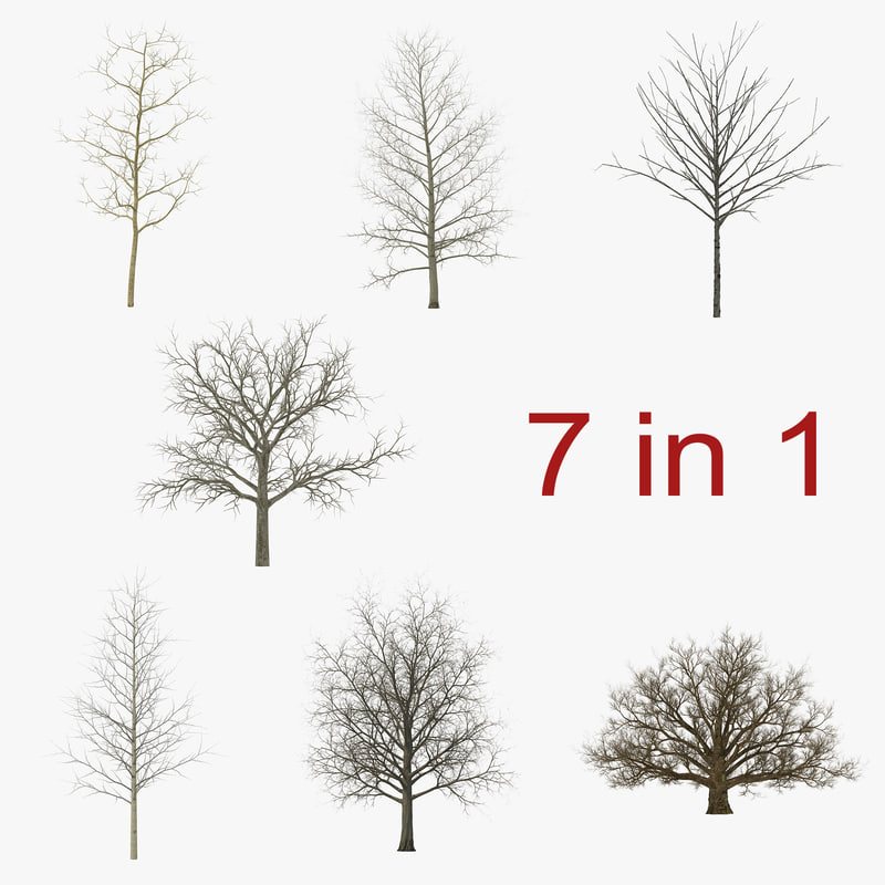3ds max winter trees