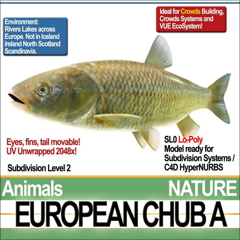 european chub 3d 3ds