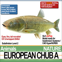 european chub 3d 3ds