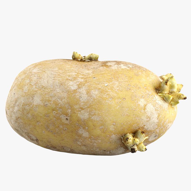 c4d potato