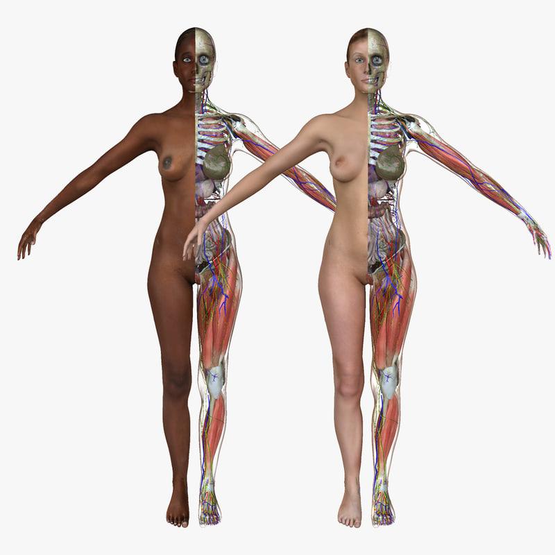 ma ultimate complete female anatomy