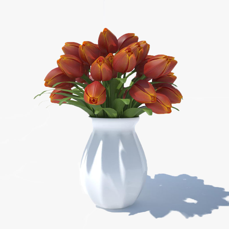 tulips bouquet v5 3ds