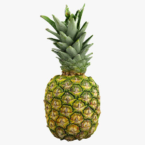 3ds realistic pineapple